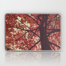 color of the season Laptop & iPad Skin