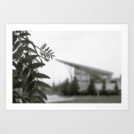 Stuff Behind Plants - CSU Rec Center Art Print