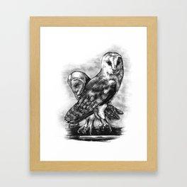 Tyto alba Framed Art Print