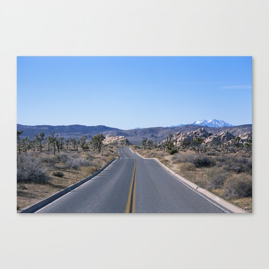 this road is my road Canvas Print