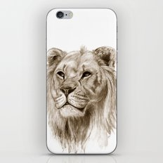 A Lion :: Without Pride iPhone & iPod Skin