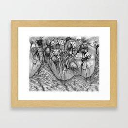 Anomalies II Framed Art Print