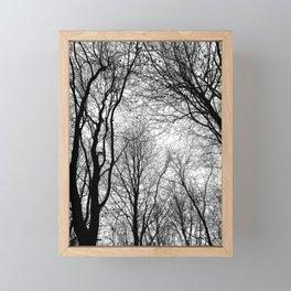 Tree Silhouette Series 6 Framed Mini Art Print