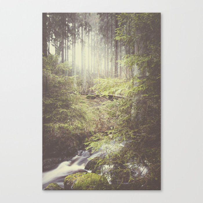 The paths we wander III Canvas Print