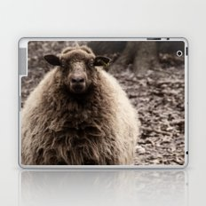 Sheep Stare Laptop & iPad Skin