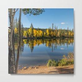 Autumn - 0758 Aspen Mirror Lake, Utah Metal Print
