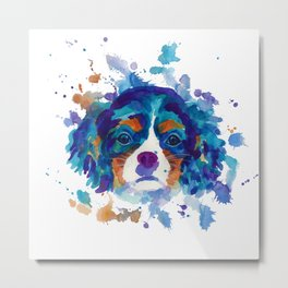 The cavalier king Charles Spaniel portrait in blue Metal Print