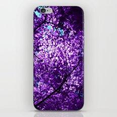purple tree XXXIV iPhone & iPod Skin