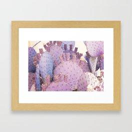 Santa Rita Framed Art Print