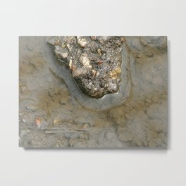 alligator rock Metal Print