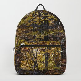 Beech forest in Autumn Backpack