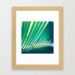 Tropical Exuberance I Framed Art Print