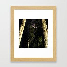 Moon light trees in Okunoin cemetery of Koyasan, Japan Framed Art Print