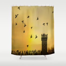 Rooftop Birds Shower Curtain