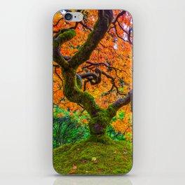Autumn's Jewel iPhone Skin