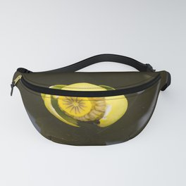 Everglades Flower Fanny Pack