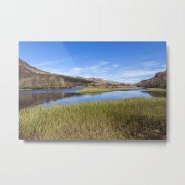 Loch Earn Reeds Metal Print