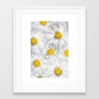 daisies Framed Art Prints featuring Daisies by Klara Acel
