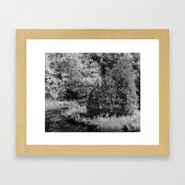 Blackened Path Framed Art Print