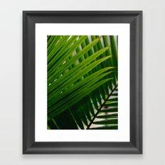 Tropical Lines Framed Art Print