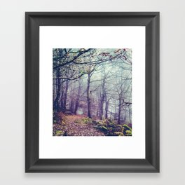 Peak District Forest Framed Art Print