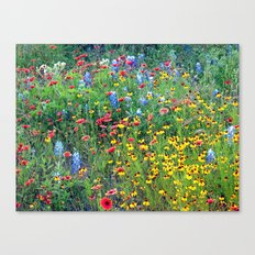 Natures colors Canvas Print