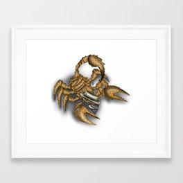 Texas Scorpion Framed Art Print