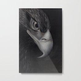 'GAZE' - Wedge Tail Eagle, original artwork in Charcoal & Pastel Metal Print