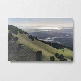 Burdell Hillside Metal Print