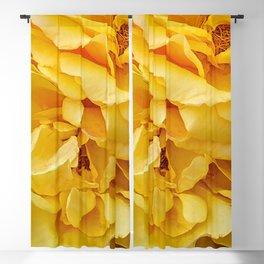 Yellow Petals Blackout Curtain