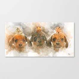 Three is the magic number. Canvas Print