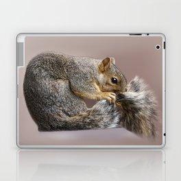 Shy squirrel Laptop & iPad Skin