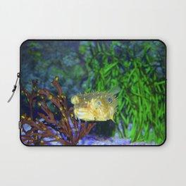 Striped Burrfish Laptop Sleeve