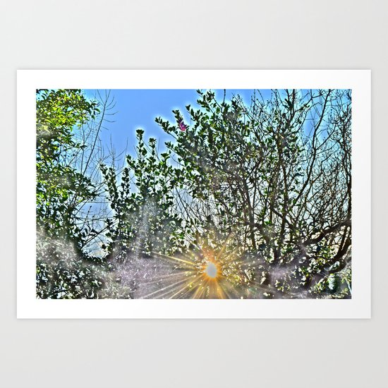 Pure Morning II Art Print