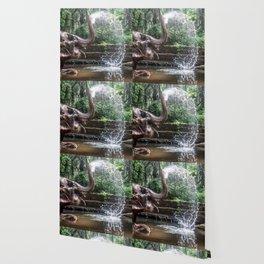 Elephant Bathing Wallpaper