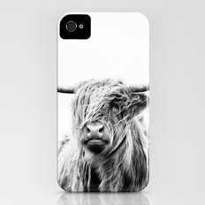 portrait of a highland cow iPhone (4, 4s) Slim Case