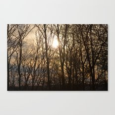 Iowa Winter Sun Canvas Print