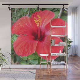 Red Hibiscus Flower Wall Mural