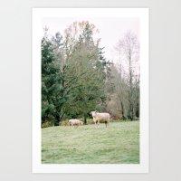Mr Sheep Art Print