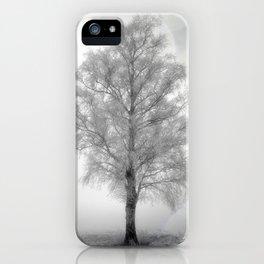 Birch in winter iPhone Case
