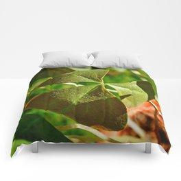 Shamrock closeup Comforters