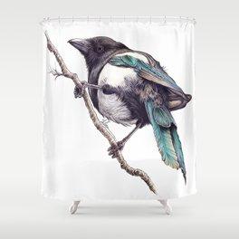 Juvenile Magpie 02 Shower Curtain