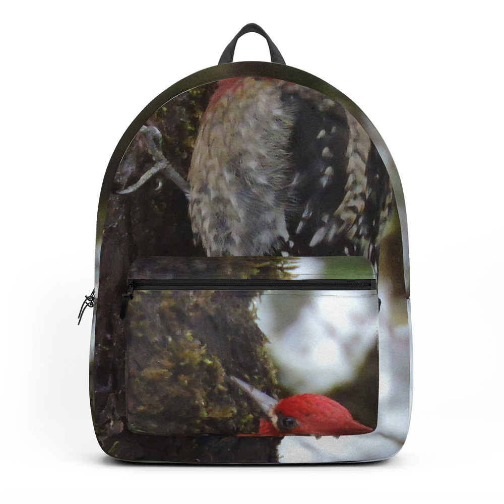 Red-Breasted Sapsucker in Christmas Snow Backpack by rscarlson (BKP4016012) photo
