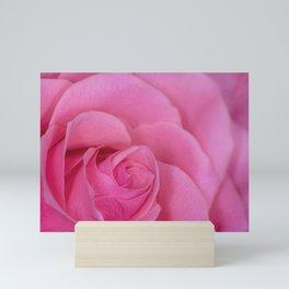 Frilly Rose Mini Art Print