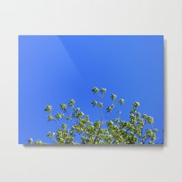 With Open Arms Metal Print