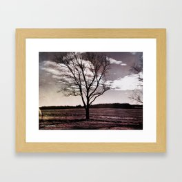 One Tree Framed Art Print