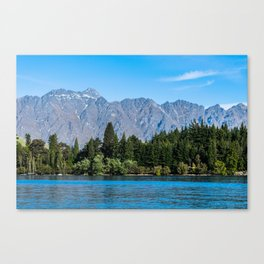 Landscape in New Zealand Canvas Print