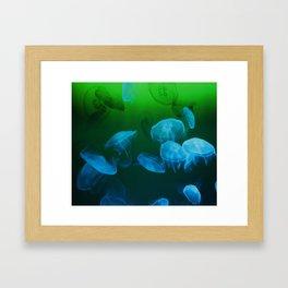 Moon Jellyfish - Blue and Green Framed Art Print