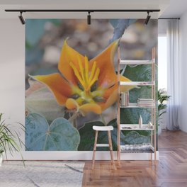 Fremontodendron Blossom Wall Mural
