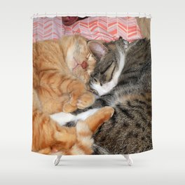 Nap Buddies Shower Curtain